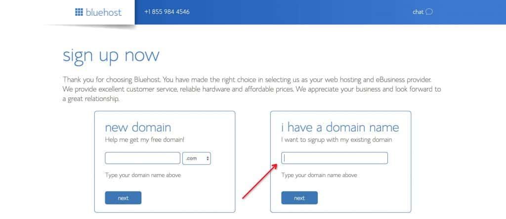 Bluehost WordPress 域名选择